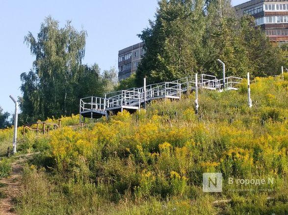 Благоустройство Лопатинского оврага планируется завершить в начале сентября - фото 9