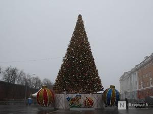 Главную нижегородскую новогоднюю елку снова поменяют