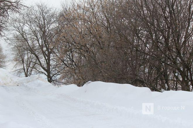 Возрождение «ракушки» и смотровой балкон: как преобразится Александровский сад - фото 31