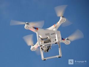 Семь современных дронов получат нижегородские лесопожарные службы
