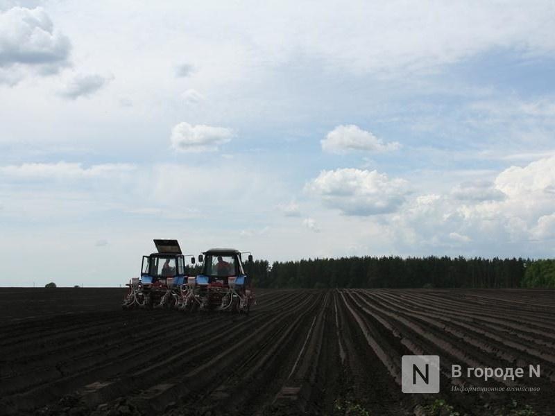 Сельскохозяйственное страхование оптимизируют в Нижегородской области - фото 1