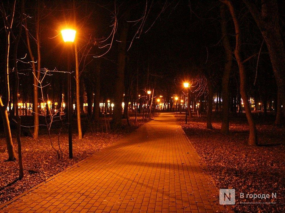 Сухостой и нехватка лавочек: нижегородцы назвали главные проблемы парка Кулибина - фото 3