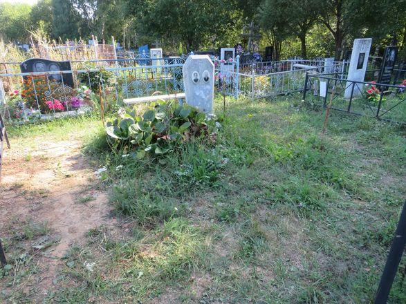 Жители Кстова похищали ограды с кладбищ - фото 5