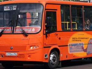 В Нижнем Новгороде перевозчик-нелегал лишился 13 автобусов