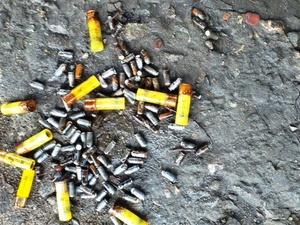 Полтысячи боеприпасов и 240 патронов нашли металлоискатели в реке под Городцом