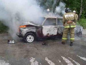 Из-за детской шалости в Бутурлине горели два автомобиля