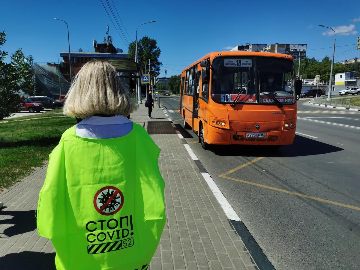 Трем нижегородским перевозчикам грозят штрафы за нарушение масочного режима - фото 1