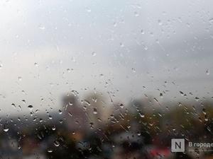 Прохладная погода с дождями и грозами ждет нижегородцев в выходные