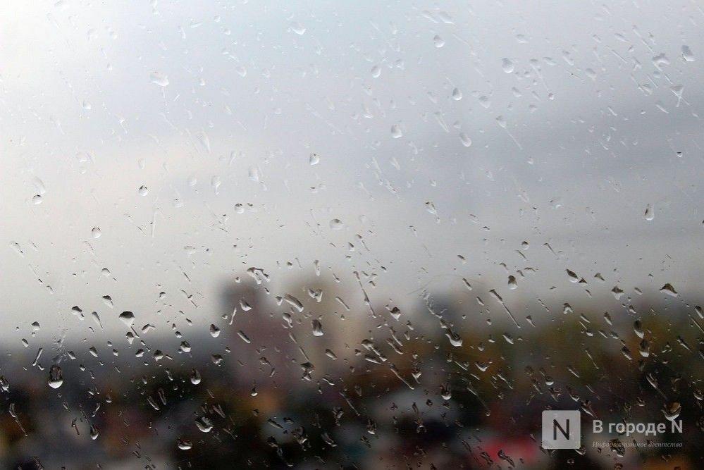 Прохладная погода с дождями и грозами ждет нижегородцев в выходные - фото 1
