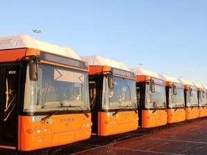 Нижегородские автобусы обновят за пять лет