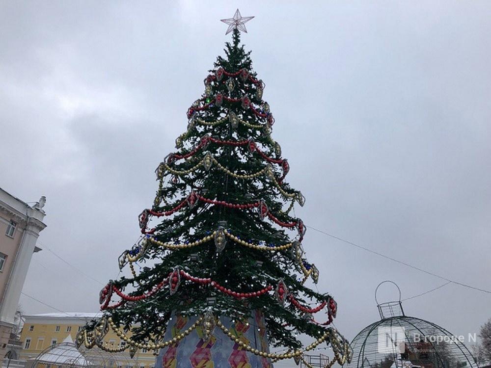 Главную нижегородскую новогоднюю елку снова поменяют - фото 3