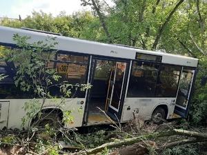 Автобус столкнулся с фурой под Дзержинском: три человека пострадали