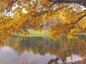 Солнечная погода и температура до +22°C ожидаются в Нижегородской области в начале осени
