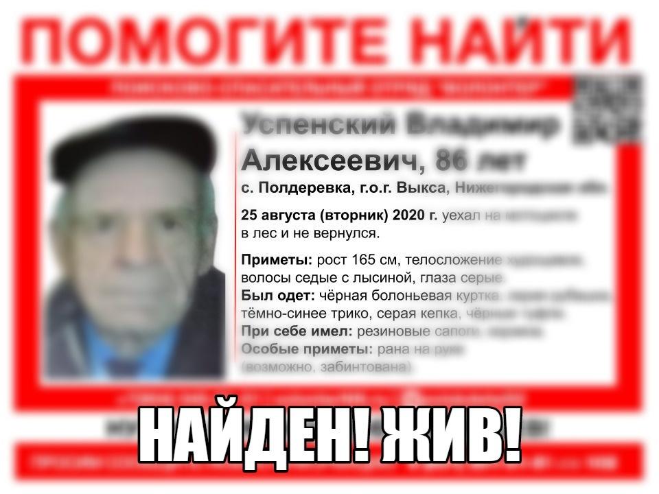 Поиски пропавшего под Выксой пенсионера завершились 28 августа  - фото 1