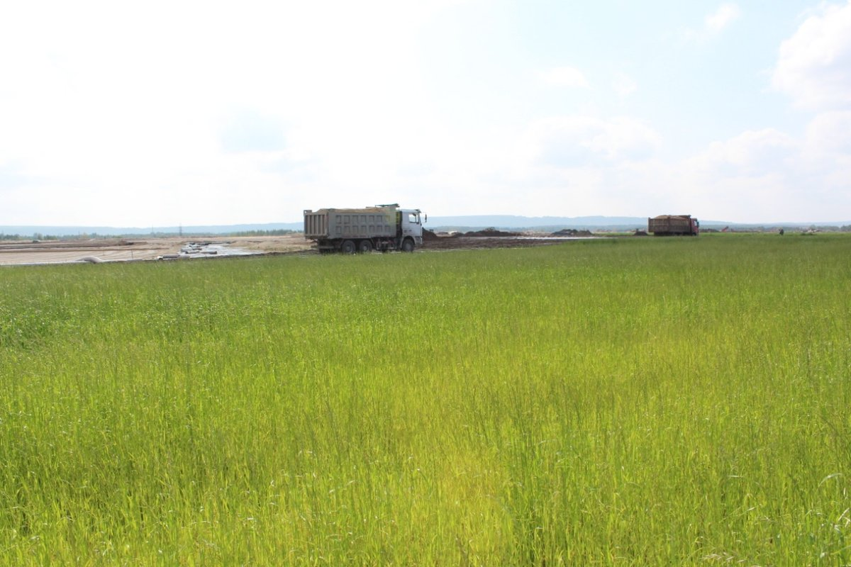 «Белое море» в Дзержинске почти наполовину стало зеленым - фото 1