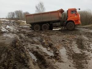 Поля в Сосновском районе превратились в свалку куриного помета